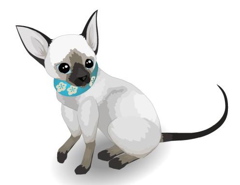 qq牧场暹罗猫怎么获得,qq牧场暹罗猫经验属性价格以及图片